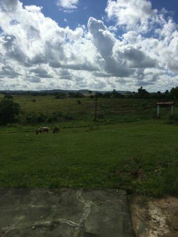 Fazenda na Cidade de Mata de São João - Foto 9