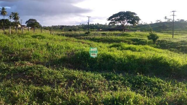 Itagibá. Fazenda pecuária de 375 Hectares com toda infraestrutura. - Foto 18