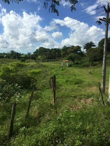 Fazenda na Cidade de Mata de São João - Foto 6