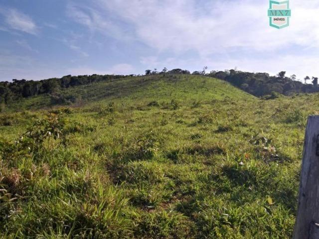 Maraú. Fazenda de 710 Hectares com diversas atividades de produção e rica em água - Foto 3