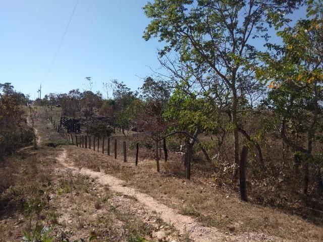 Chácara km 22 estrada da guia - Foto 3