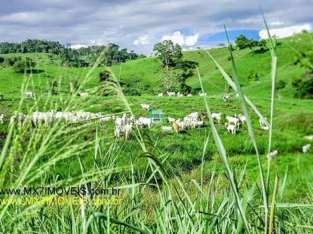 Itaju do Colônia. Linda Fazenda pecuária de 375 Hectares - Foto 4