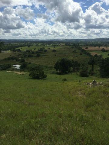 Fazenda na Cidade de Mata de São João - Foto 11