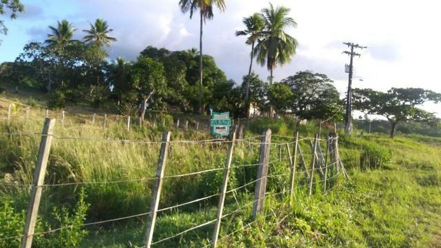 Itagibá. Fazenda pecuária de 375 Hectares com toda infraestrutura. - Foto 17