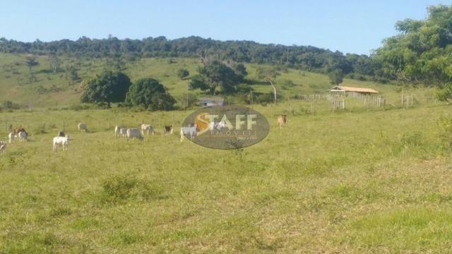 Sítio rural à venda, Agrisa, Cabo Frio - Foto 18
