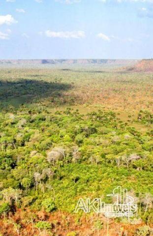 Fazenda à venda, 690000000 m² por r$ 172.500.000,00 - centro - fernando falcão/ma - Foto 4