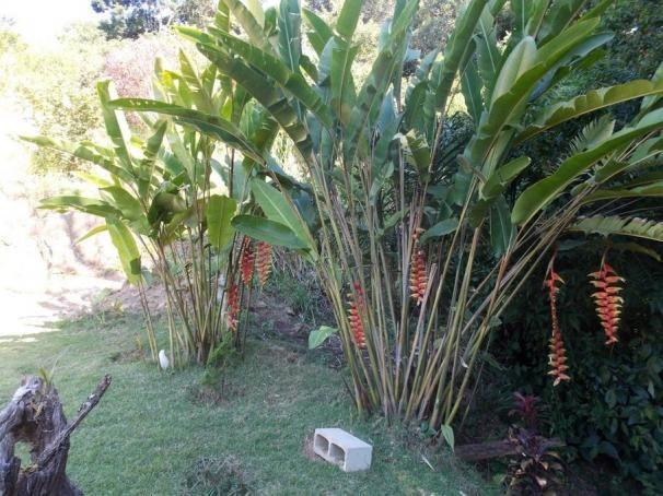Terreno à venda em Jardim guaçu, São roque cod:59919 - Foto 9