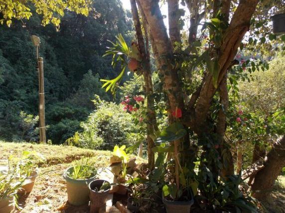 Terreno à venda em Jardim guaçu, São roque cod:59919 - Foto 11