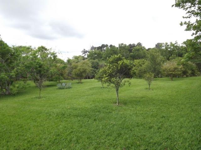 Sítio à venda em Centro, Vargem grande paulista cod:61061 - Foto 14
