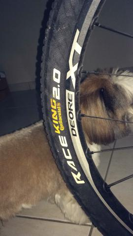 Bike carbono aro 26 - Foto 4