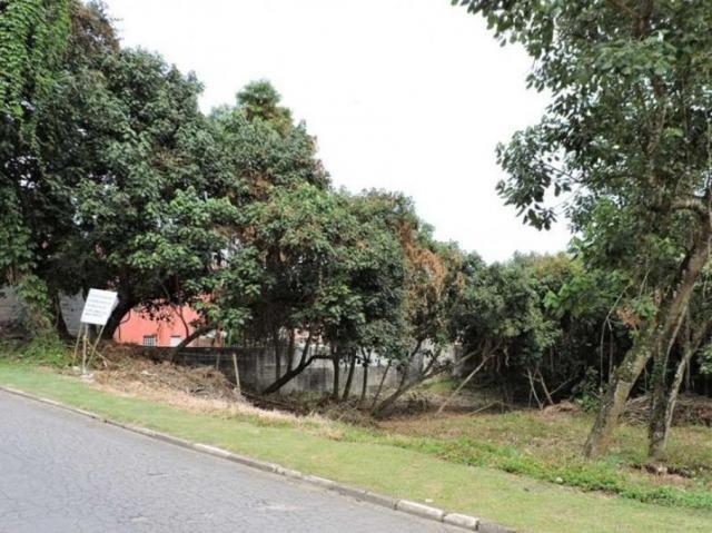 Loteamento/condomínio à venda em Terras do madeira, Carapicuíba cod:60320 - Foto 3