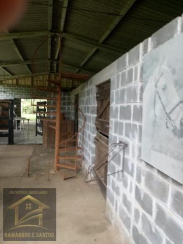 Aluga-se chácara com 18 alqueires com casa e estrutura para criação de gado - Foto 19