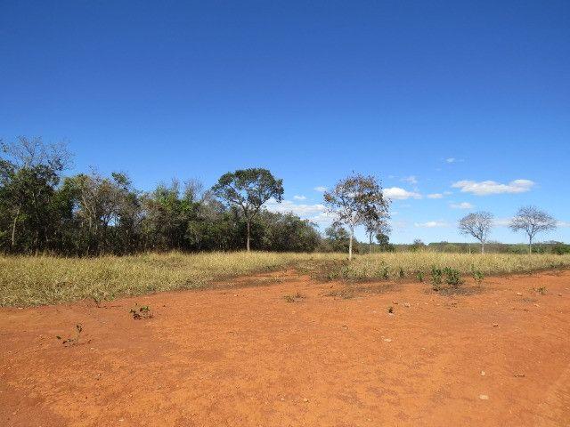 Fazenda em Corinto com área de 100 há, sede boa, curral, 70% formada - Foto 10