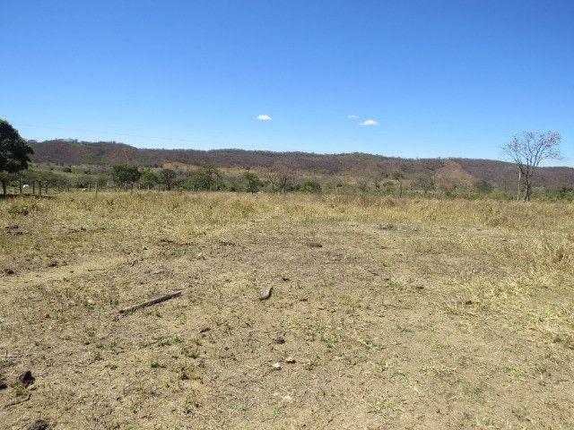 Fazenda em Augusto de Lima com área de 350 há, toda formada - Foto 12
