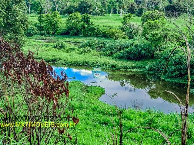 Itaju do Colônia. Linda Fazenda pecuária de 375 Hectares - Foto 11