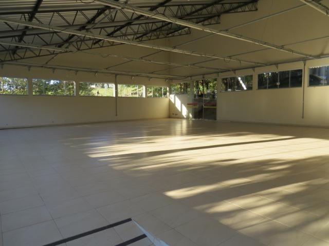 REF 1278 Sítio 50.000 m² , frente ao asfalto, rico em água, Imobiliária Paletó - Foto 3