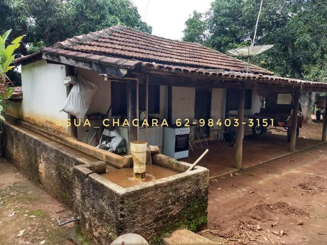 25 alqueires Porteira Fechada Goianira- GO - Foto 17