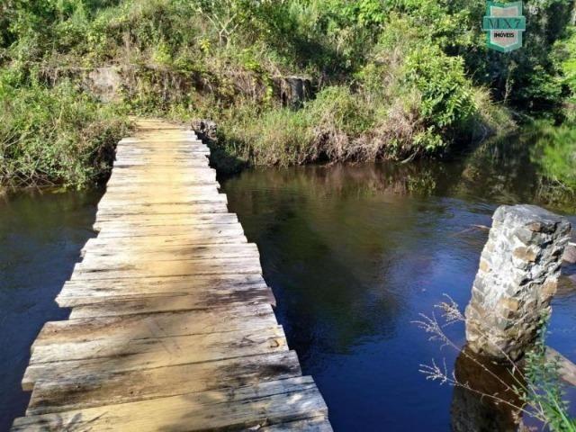Maraú. Fazenda de 710 Hectares com diversas atividades de produção e rica em água - Foto 17