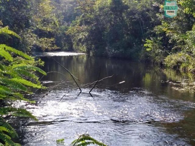 Maraú. Fazenda de 710 Hectares com diversas atividades de produção e rica em água - Foto 18