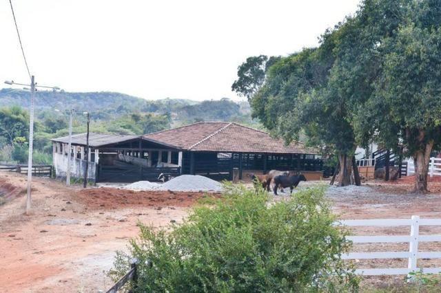 25 alqueires Porteira Fechada Goianira- GO - Foto 3