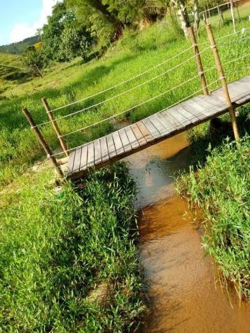 Sítio à venda em Córrego dos monos, Mesquita cod:559 - Foto 8