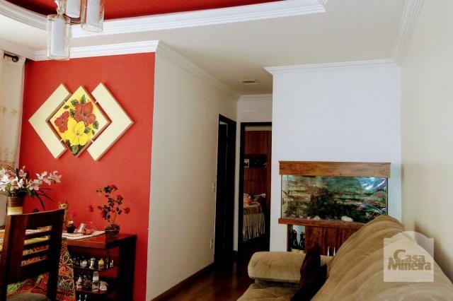 Apartamento à venda com 2 dormitórios em Carlos prates, Belo horizonte cod:256781