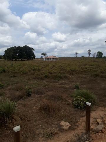 Vendo fazenda com 315 Hectares de terra!! - Foto 13