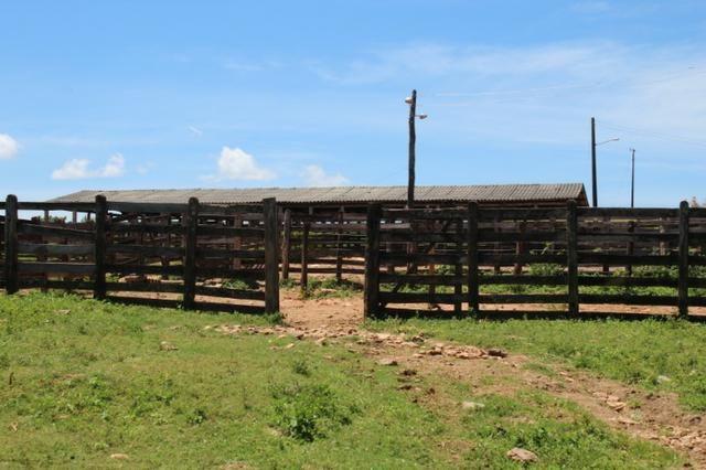 Fazenda 396 Alqueires Municipio Cocalzinho