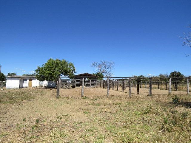 Fazenda em Augusto de Lima com área de 350 há, toda formada - Foto 18