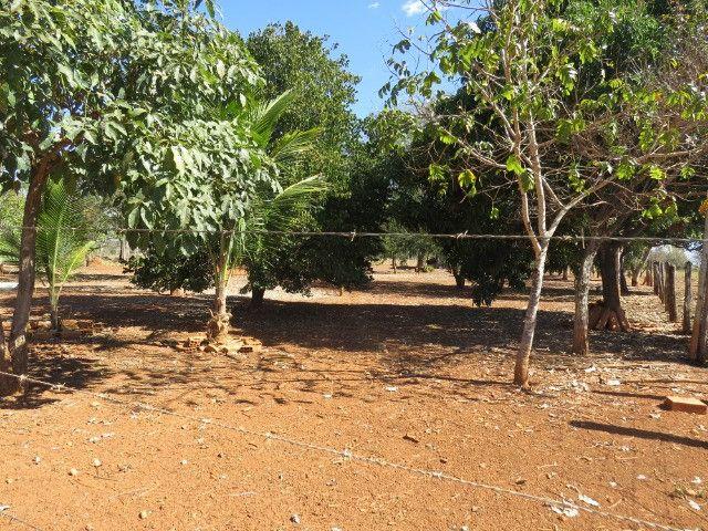Fazenda em Corinto com área de 100 há, sede boa, curral, 70% formada - Foto 13