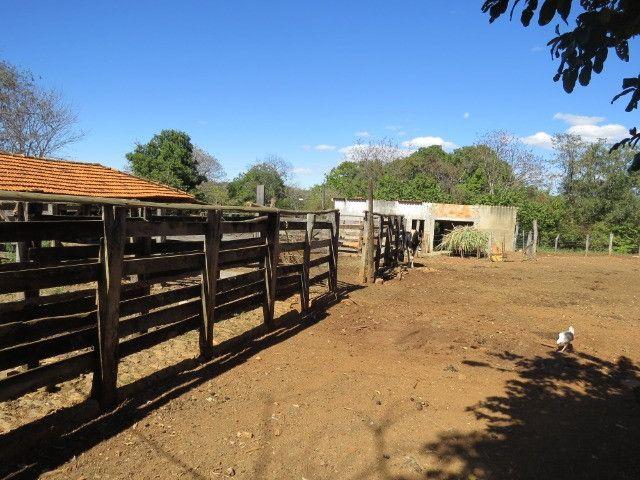 Fazenda em Corinto com área de 100 há, sede boa, curral, 70% formada - Foto 9