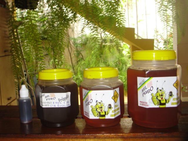 Mel da abelha apis melífera