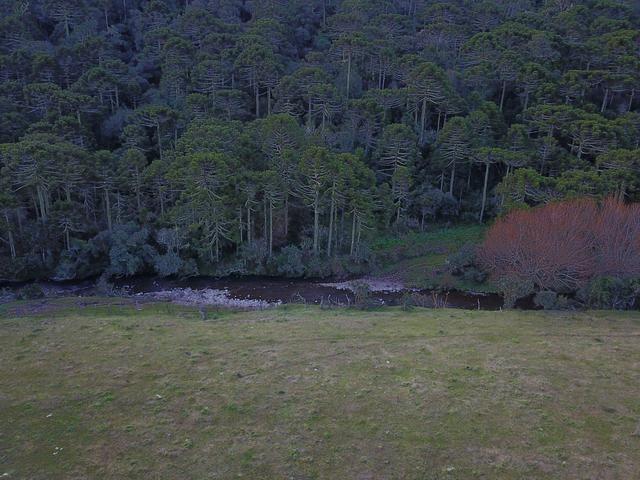 Terreno em Urubici - Foto 8