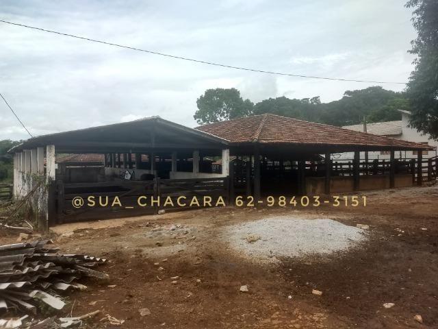 25 alqueires Porteira Fechada Goianira- GO - Foto 13
