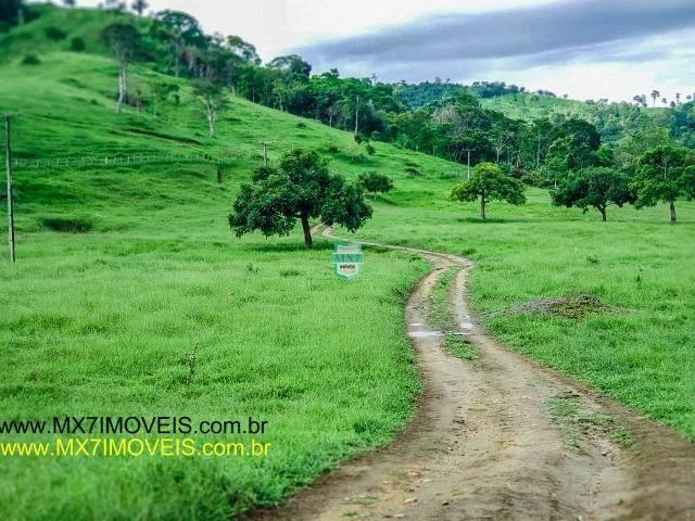 Itaju do Colônia. Linda Fazenda pecuária de 375 Hectares - Foto 6