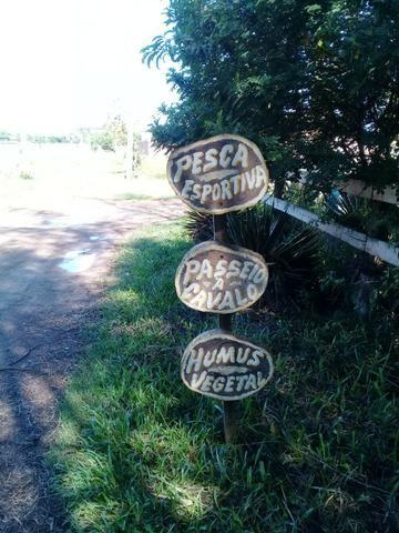 L-Loteamento Localizado a 500m da Rodovia Amaral Peixoto em Unamar - Tamoios - Cabo Frio! - Foto 2