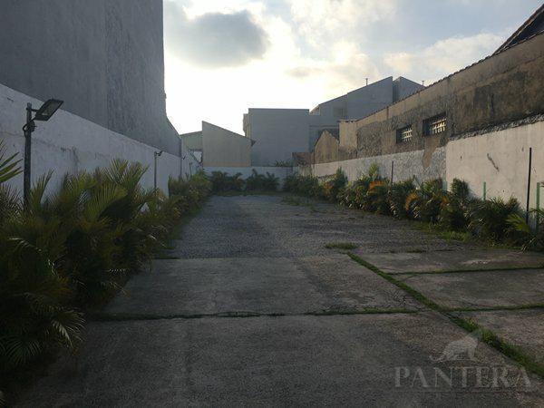 Terreno para alugar em Parque das nações, Santo andré cod:56498 - Foto 4