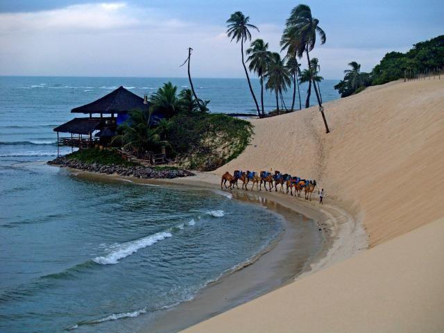 Reveillon Praia de Genipabu - Janeiro 2020 - Foto 6