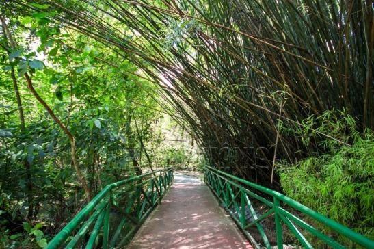 Casa de condomínio à venda com 4 dormitórios em Além ponte, Sorocaba cod:59323 - Foto 10