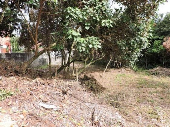Loteamento/condomínio à venda em Terras do madeira, Carapicuíba cod:60320 - Foto 4