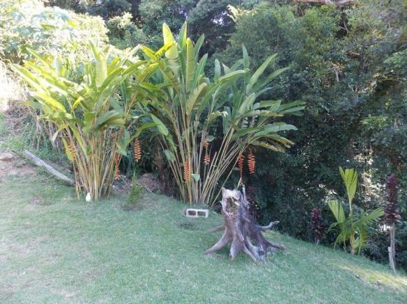 Terreno à venda em Jardim guaçu, São roque cod:59919 - Foto 4