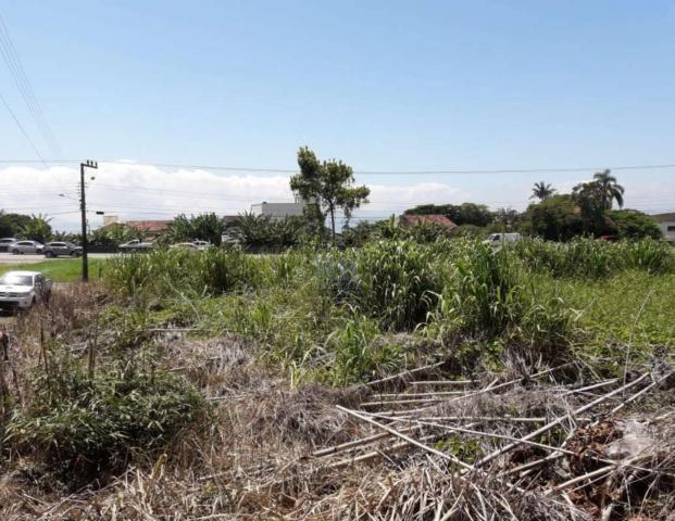 Terreno à venda em São miguel, Biguaçu cod:TE006896 - Foto 3