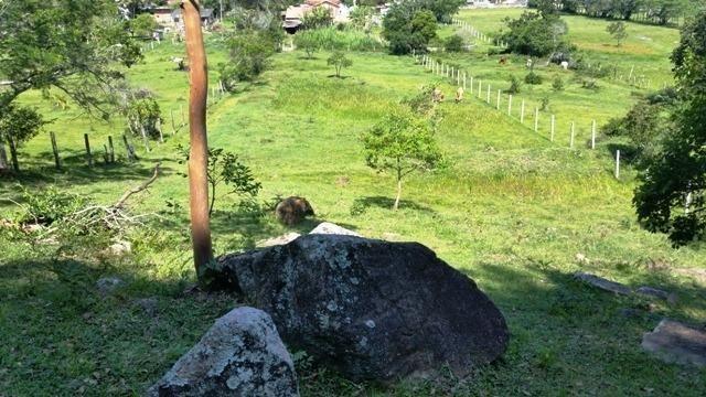 Chacara no Rio Vermelho muito bem localizado - Foto 6
