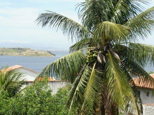 Casa com 2 dormitórios à venda, 136 m² por R$ 350.000,00 - Campo Redondo - São Pedro da Al - Foto 15