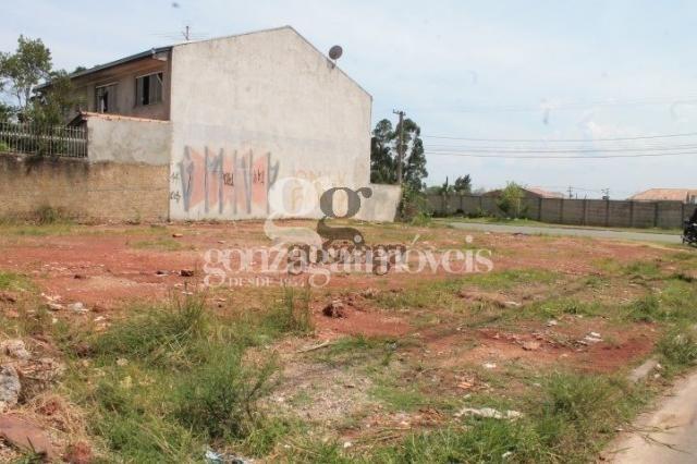Terreno para alugar em Ganchinho, Curitiba cod:14003002 - Foto 2