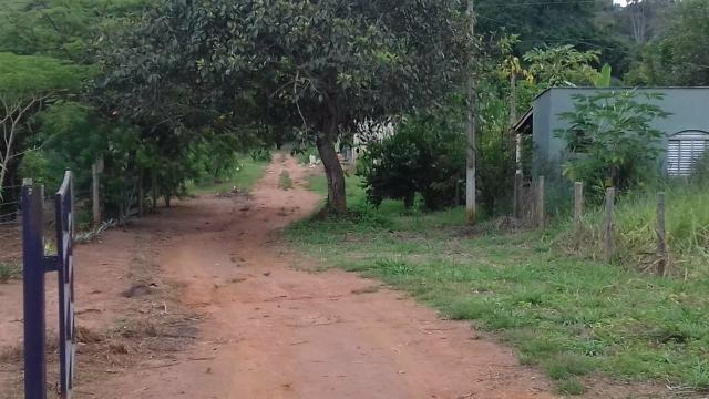 Vende - se chácara município de Cezarina na Beira do Rio dos bois - Foto 4