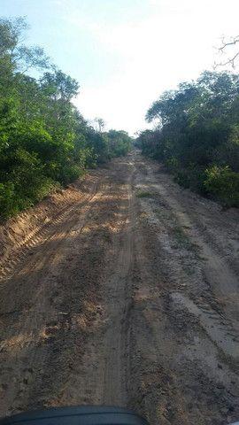 Fazenda em Pilão Arcado - BA - Foto 4