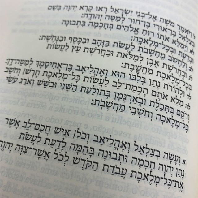 A Torá Comentada Brian Kibuuka Edição Bilíngue Hebraico - Foto 2