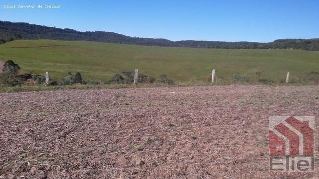 Fazenda para Plantio e Pastagem em Santa Terezinha - Foto 9