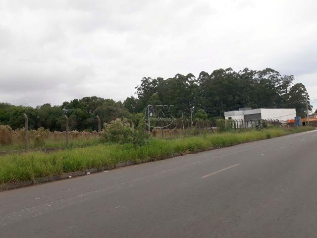 Terreno à venda em Distrito industrial, Cachoeirinha cod:2575 - Foto 4